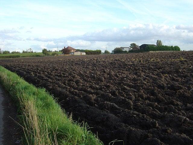 Common misconceptions about soil improvement for Soil improvement